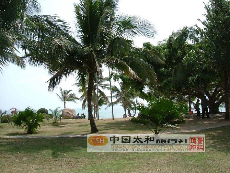 天涯热带海洋动物园位于三亚市天涯海角旅游区西侧.占地面积近3.