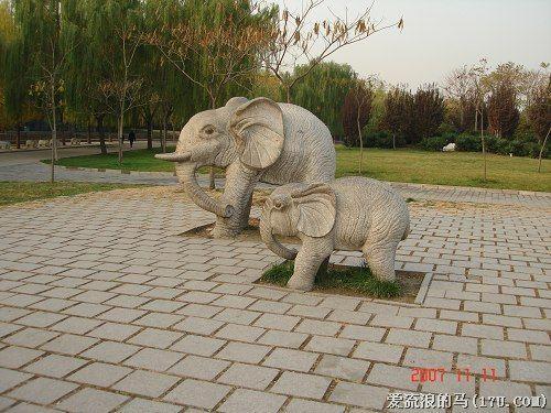 冬日里的动物们----北京动物园