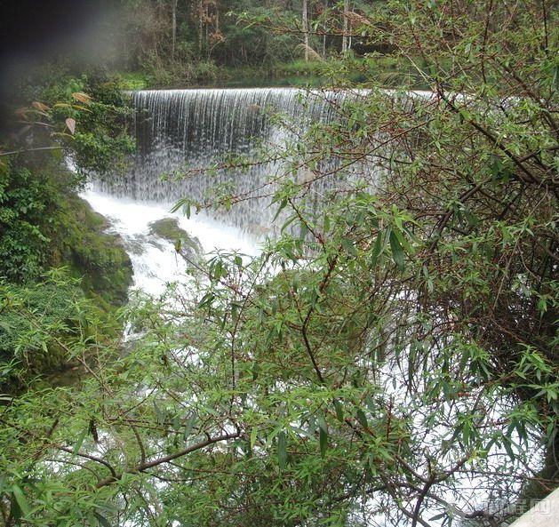 贵族荔波樟江风景区   两岸是葱茸秀丽的喀斯特原始植被,幽静的河水中