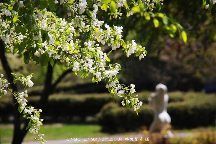 03、这片一点都没调,就是这么清爽 到过伏尔加庄园无数次,每一次,它都会给我带来惊喜。每个春天都要来伏尔加,每一年,它都会给我不一样的新鲜。 在这个春天最温馨的日子,母亲节那天我来到伏尔加。蓝蔚的天,明媚的日,粉红的花,翠嫩的绿,鹅黄的叶,花红柳绿的伏尔加让我迷离。