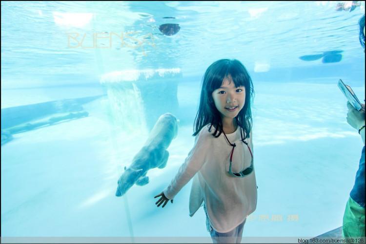 第二篇------动物园01在热带看北极熊