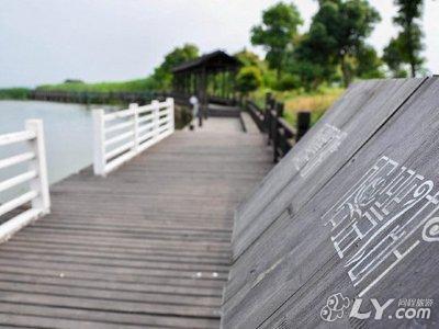 阳澄湖镇莲花岛29号